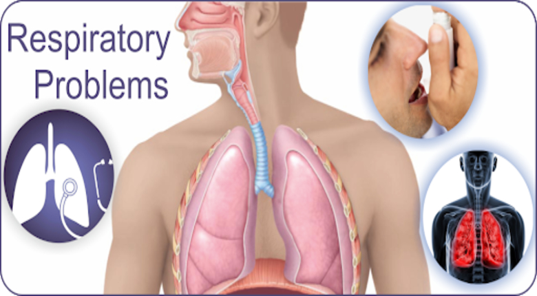 The Various Reasons For Respiratory Problems